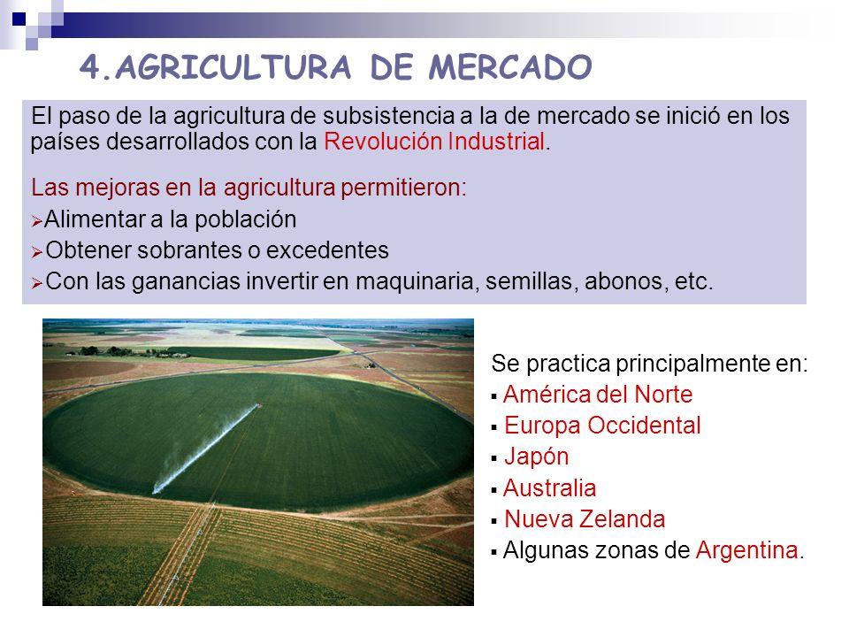 4.AGRICULTURA DE MERCADO