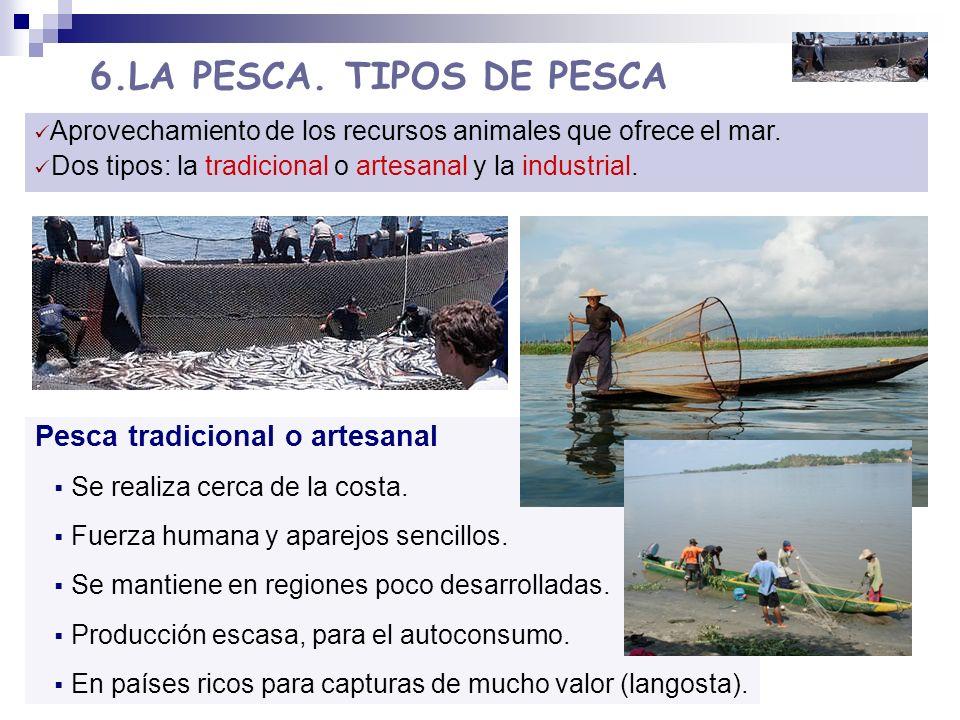 6.LA PESCA. TIPOS DE PESCA Pesca tradicional o artesanal