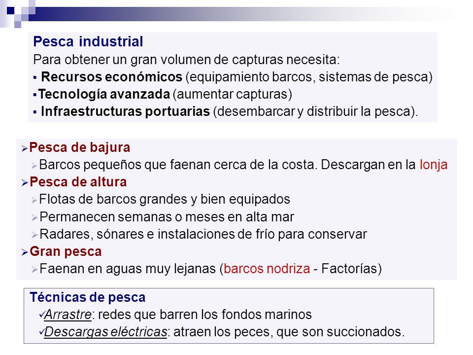 Pesca industrial Para obtener un gran volumen de capturas necesita:
