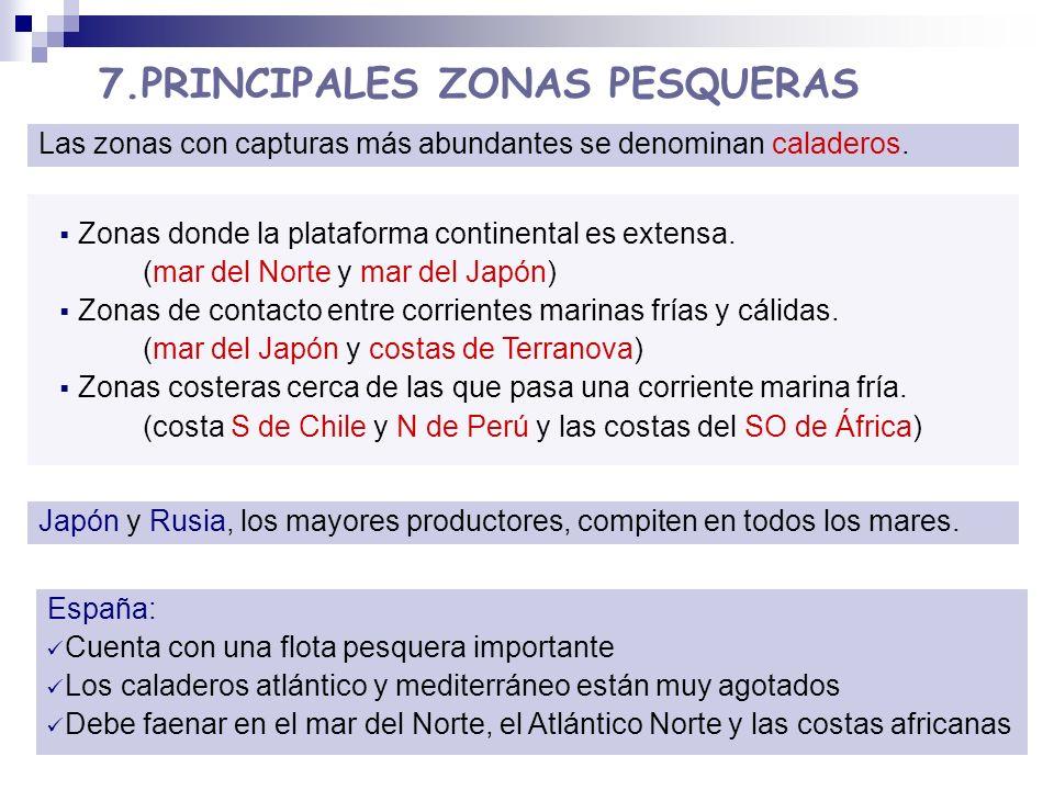 7.PRINCIPALES ZONAS PESQUERAS