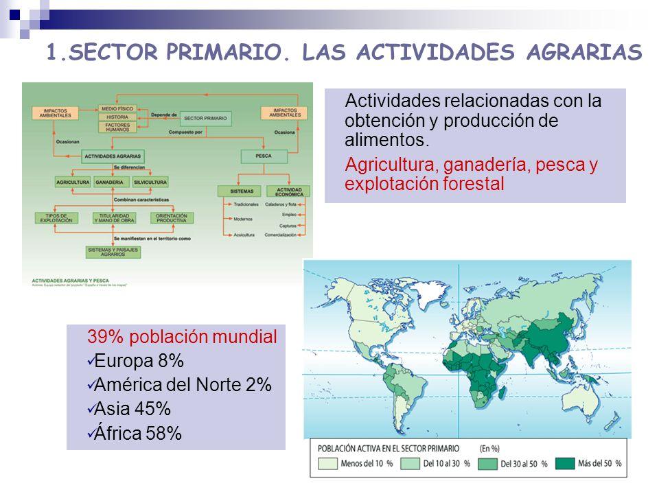 1.SECTOR PRIMARIO. LAS ACTIVIDADES AGRARIAS
