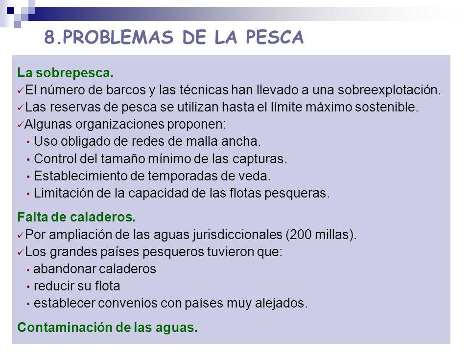 8.PROBLEMAS DE LA PESCA La sobrepesca.