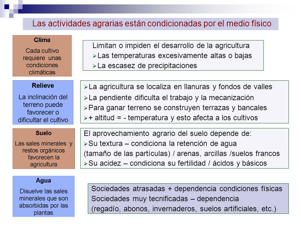 Las actividades agrarias están condicionadas por el medio físico