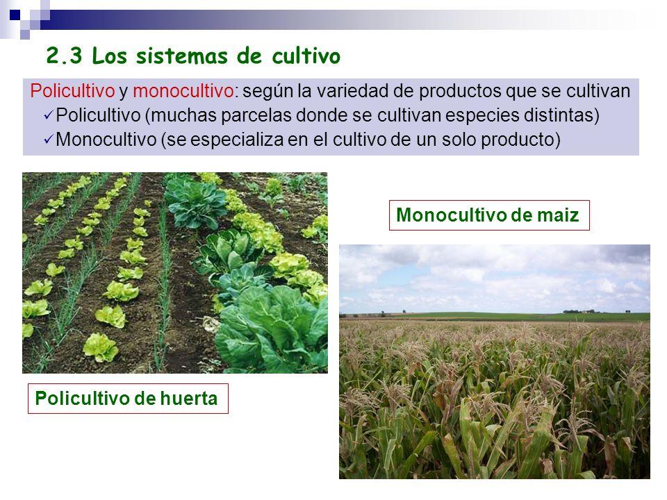 2.3 Los sistemas de cultivo
