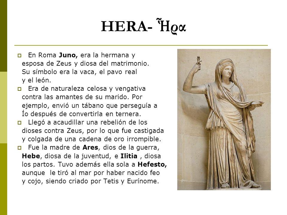 HERA- Ἧρα En Roma Juno, era la hermana y