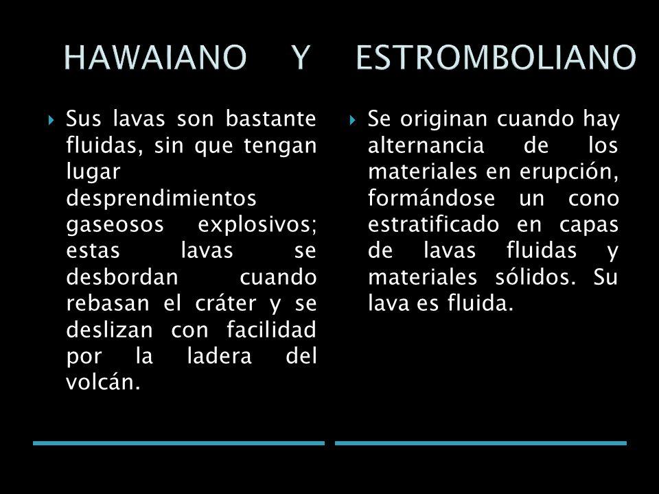 HAWAIANO Y ESTROMBOLIANO