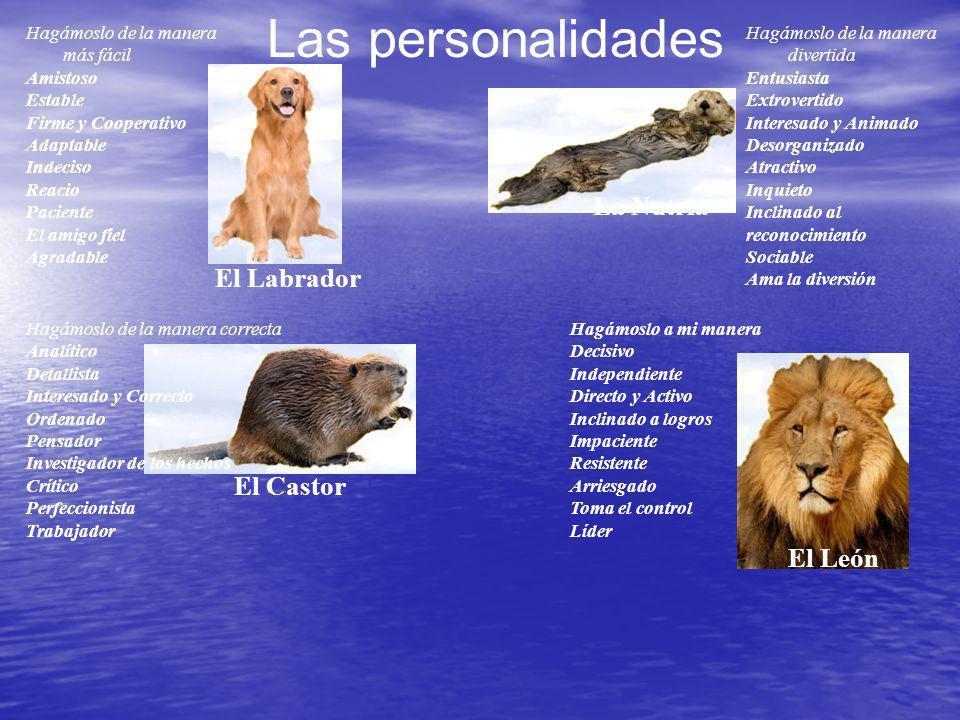 Las personalidades La Nutria El Labrador El Castor El León