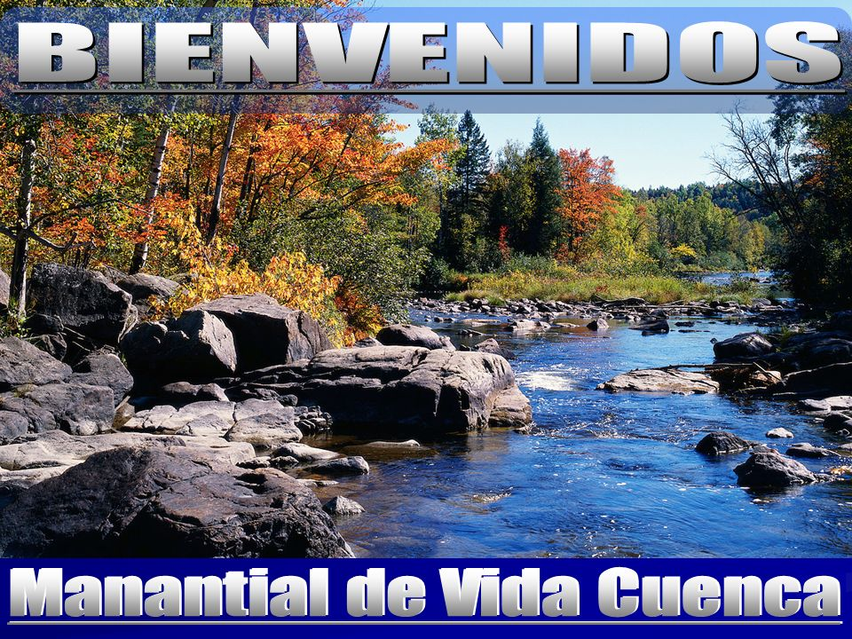 Manantial de Vida Cuenca