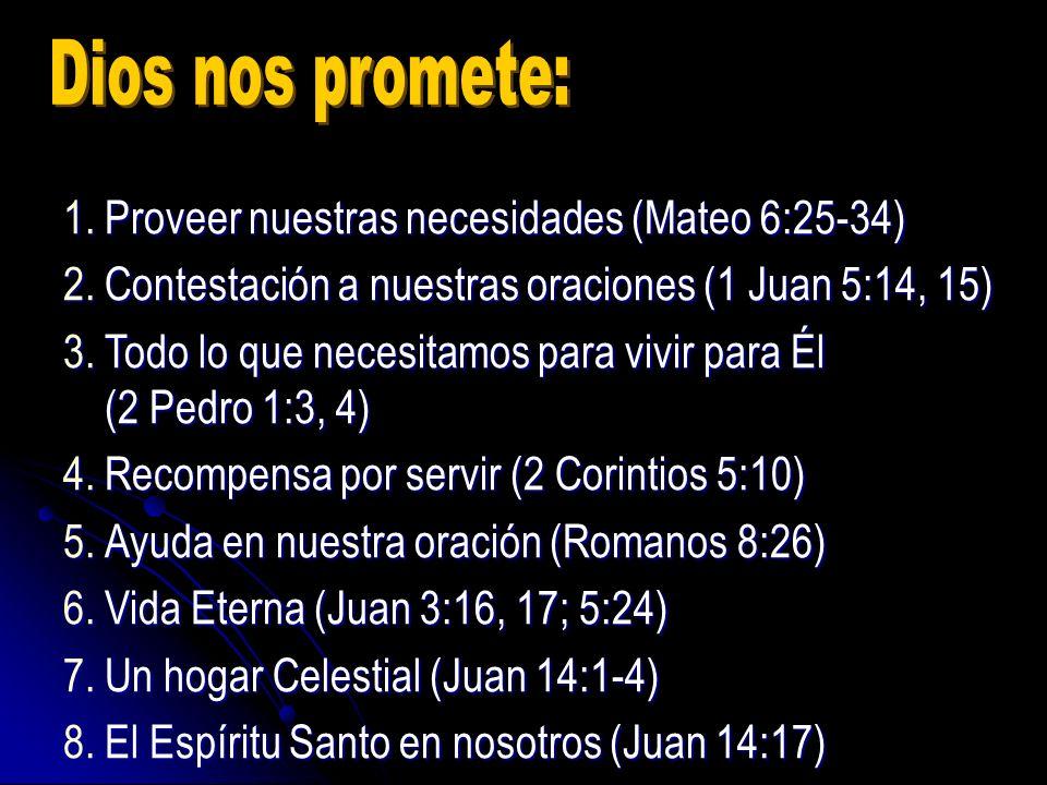 Dios nos promete: Proveer nuestras necesidades (Mateo 6:25-34)