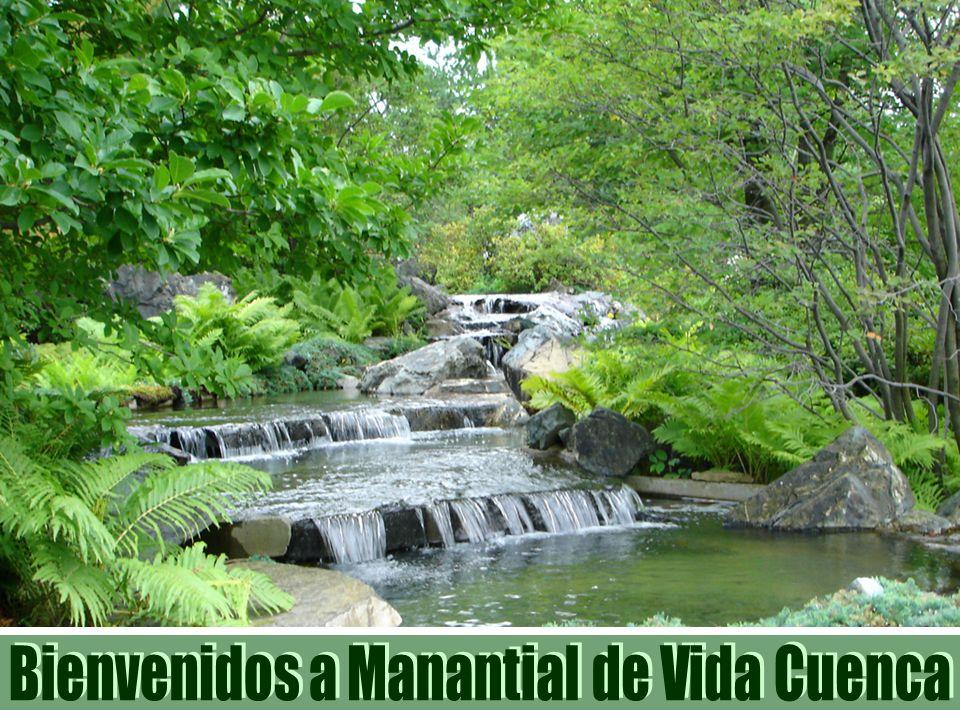 Bienvenidos a Manantial de Vida Cuenca