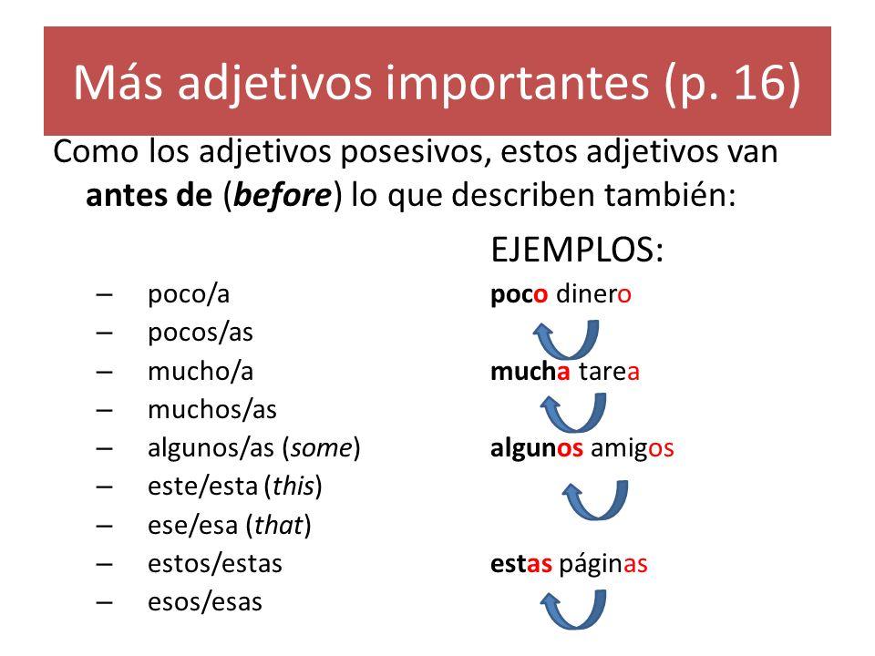 Más adjetivos importantes (p. 16)