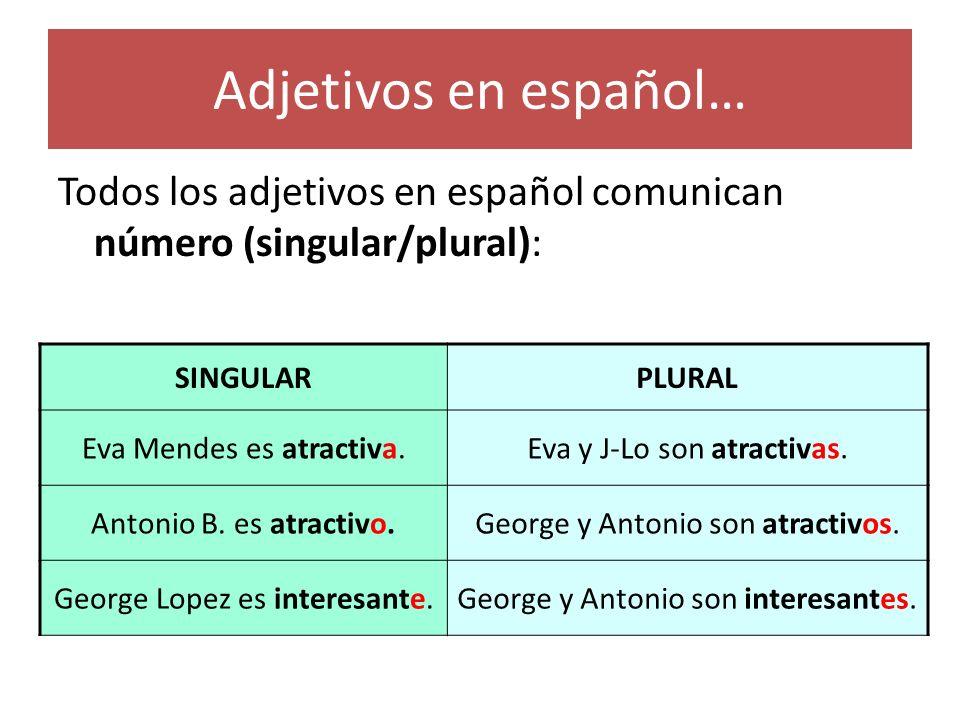 Adjetivos en español… Todos los adjetivos en español comunican número (singular/plural): SINGULAR.