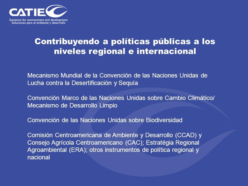Contribuyendo a políticas públicas a los niveles regional e internacional