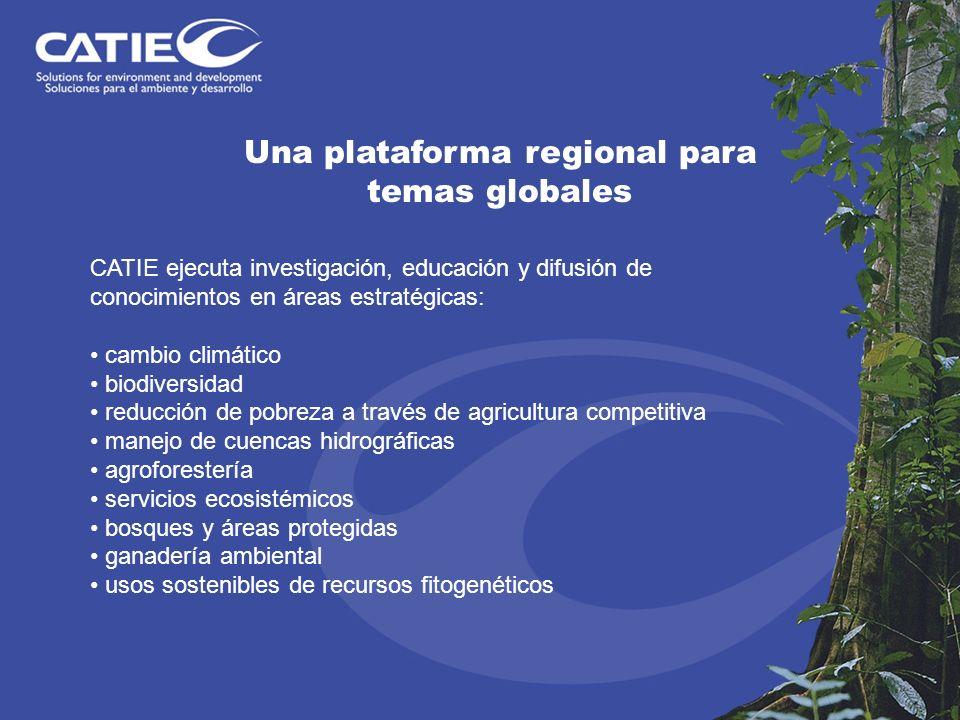Una plataforma regional para temas globales