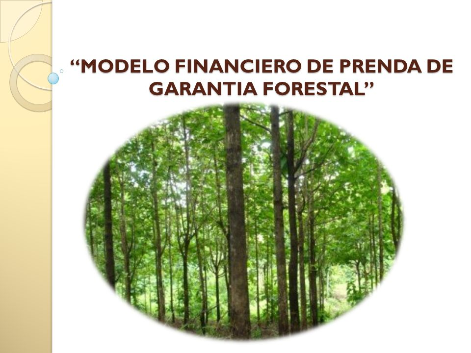 MODELO FINANCIERO DE PRENDA DE GARANTIA FORESTAL