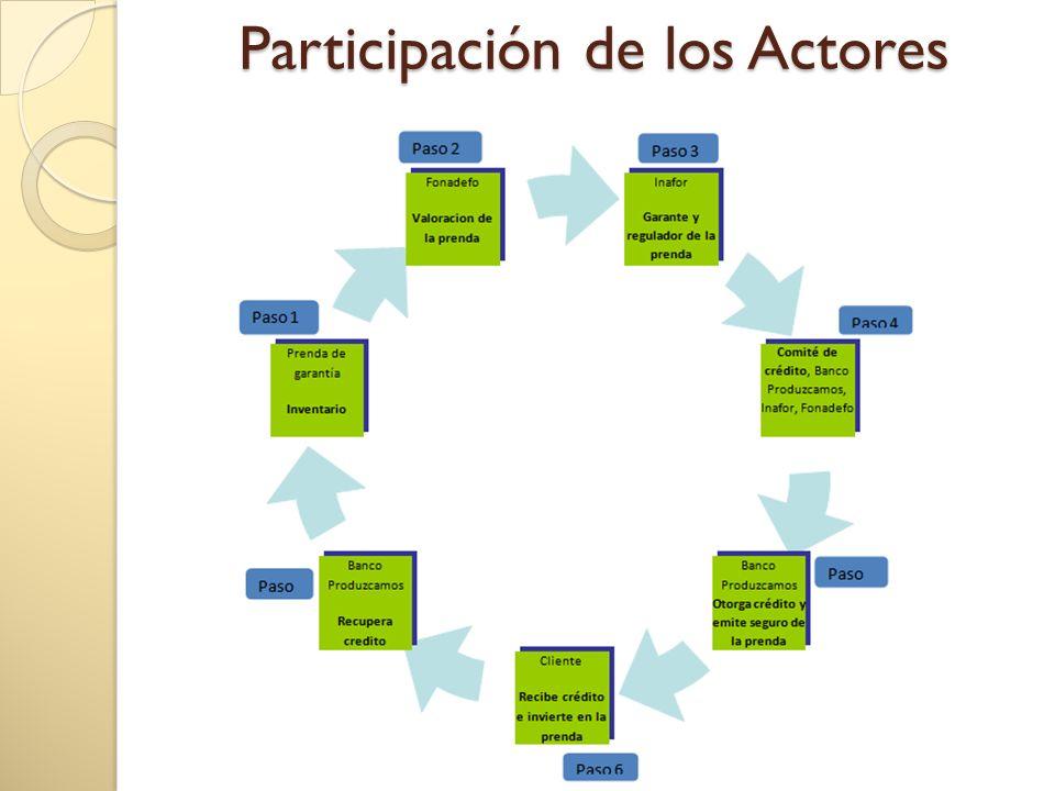 Participación de los Actores