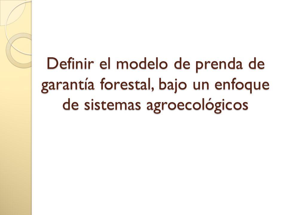 Definir el modelo de prenda de garantía forestal, bajo un enfoque de sistemas agroecológicos