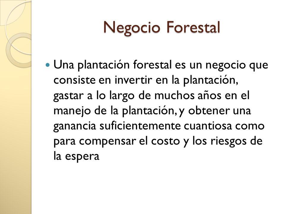 Negocio Forestal