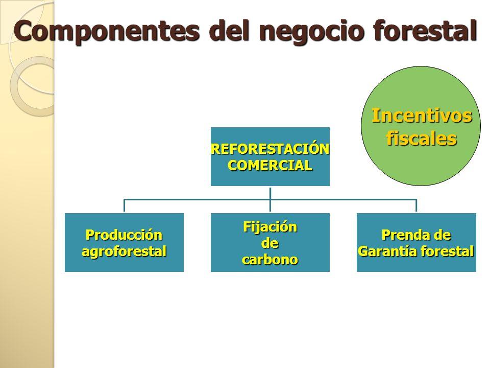 Componentes del negocio forestal
