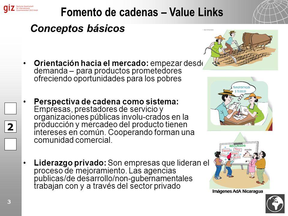 Fomento de cadenas – Value Links