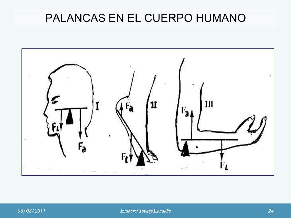 PALANCAS EN EL CUERPO HUMANO
