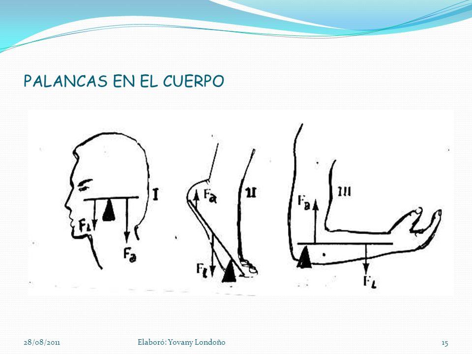 PALANCAS EN EL CUERPO 28/08/2011 Elaboró: Yovany Londoño