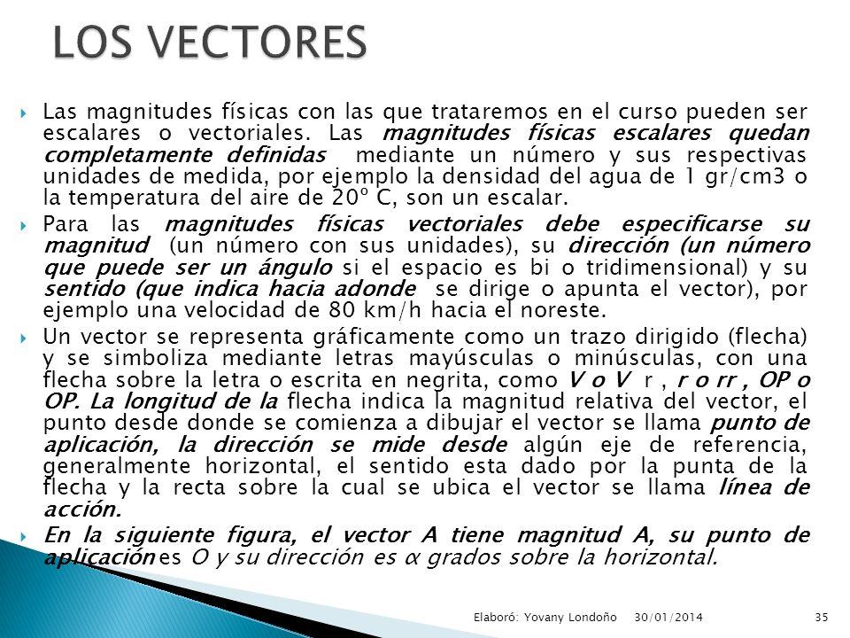 LOS VECTORES