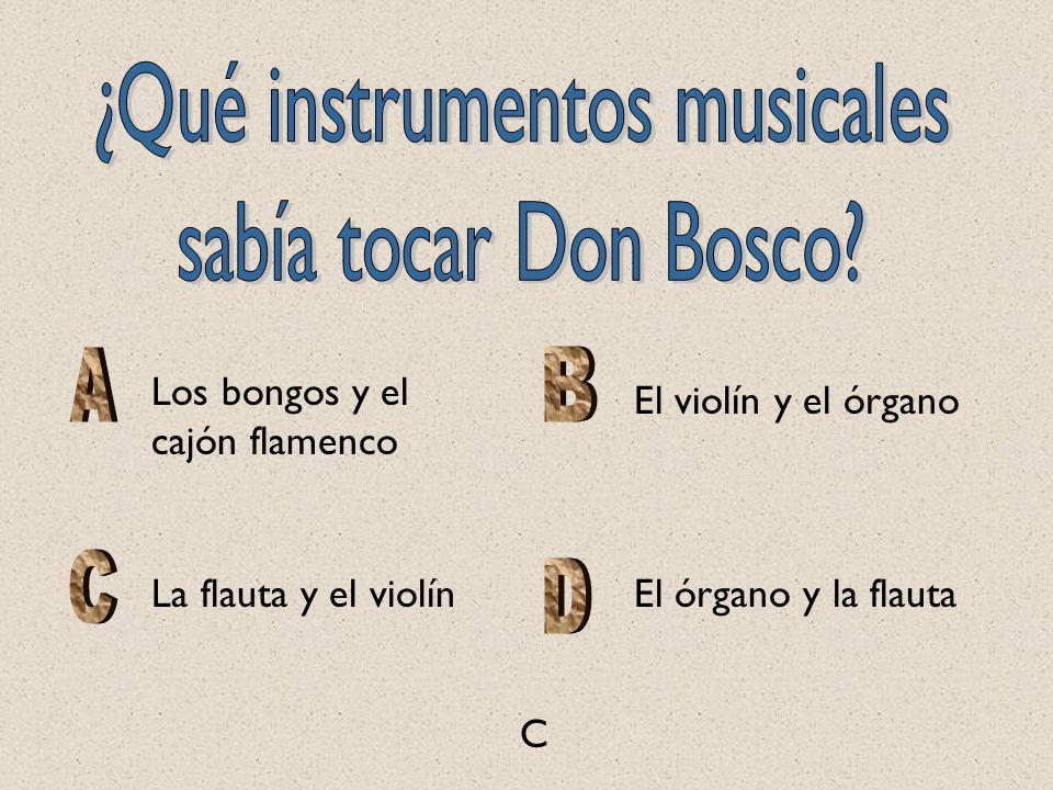 ¿Qué instrumentos musicales