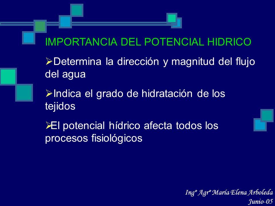 IMPORTANCIA DEL POTENCIAL HIDRICO