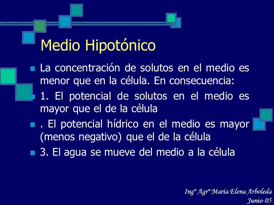 Medio Hipotónico La concentración de solutos en el medio es menor que en la célula. En consecuencia:
