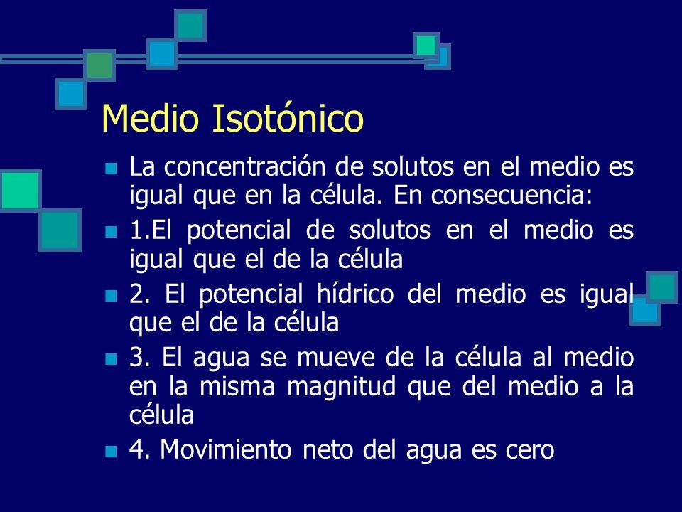 Medio Isotónico La concentración de solutos en el medio es igual que en la célula. En consecuencia: