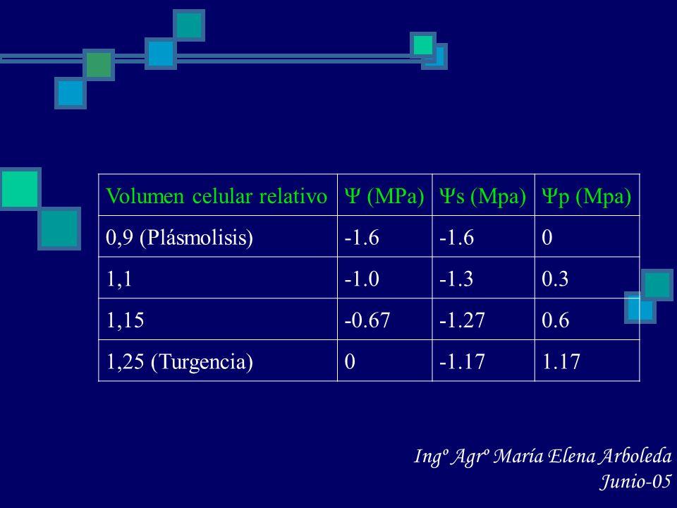 Volumen celular relativo
