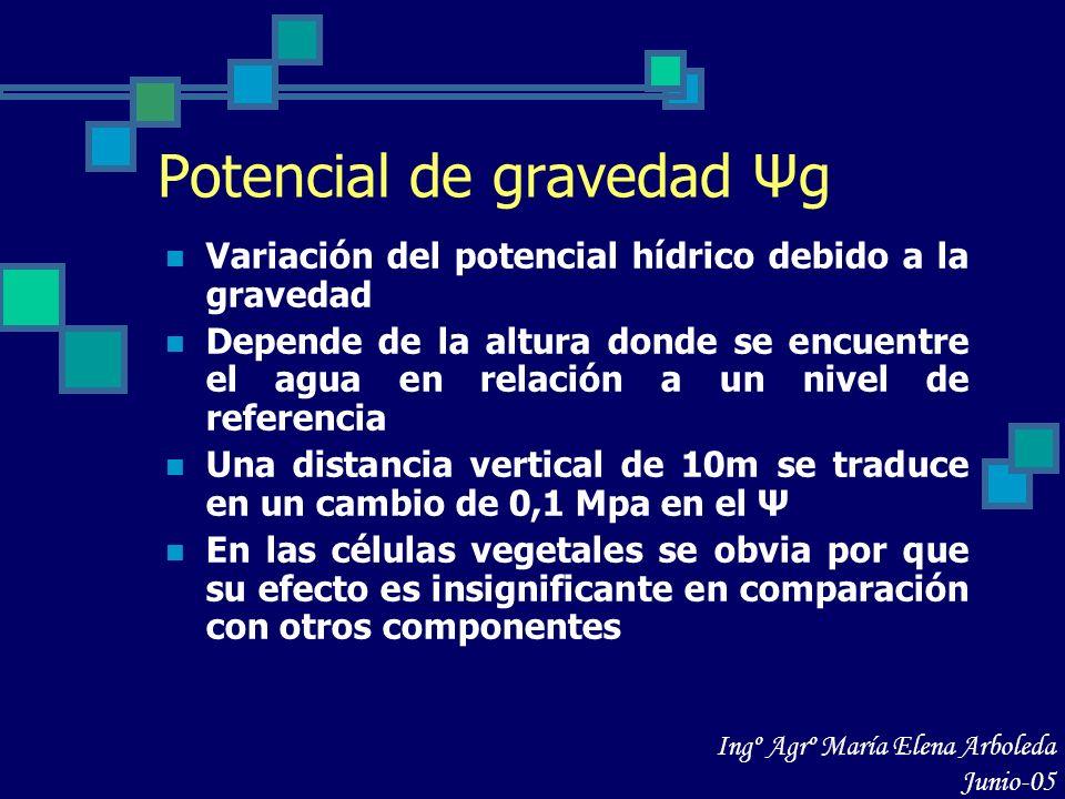 Potencial de gravedad Ψg