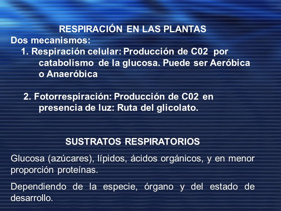 RESPIRACIÓN EN LAS PLANTAS SUSTRATOS RESPIRATORIOS