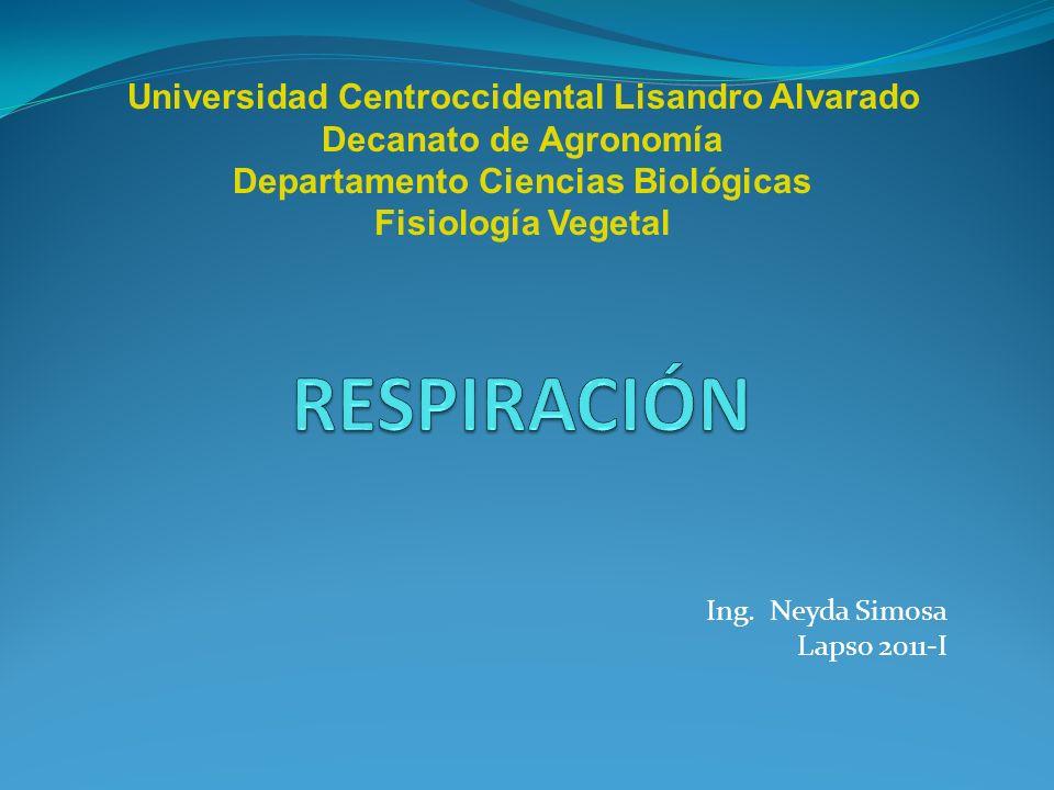 Ing. Neyda Simosa Lapso 2011-I
