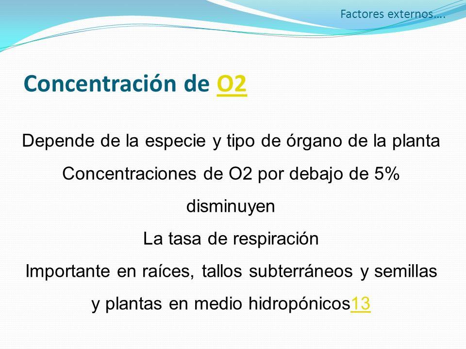 Factores externos….Concentración de O2. Depende de la especie y tipo de órgano de la planta. Concentraciones de O2 por debajo de 5% disminuyen.