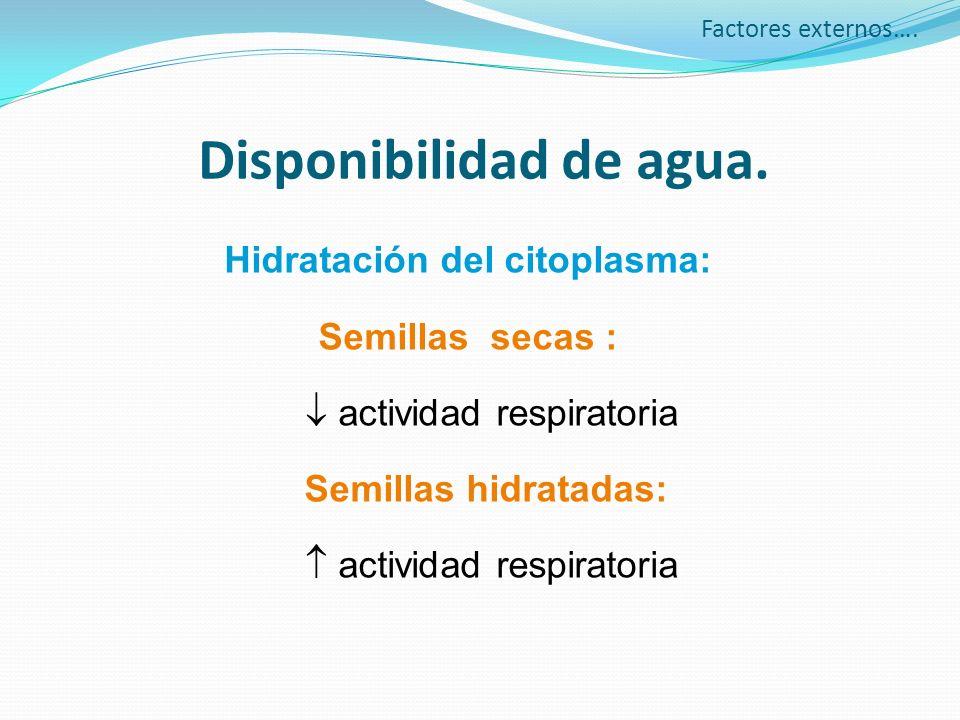Disponibilidad de agua.