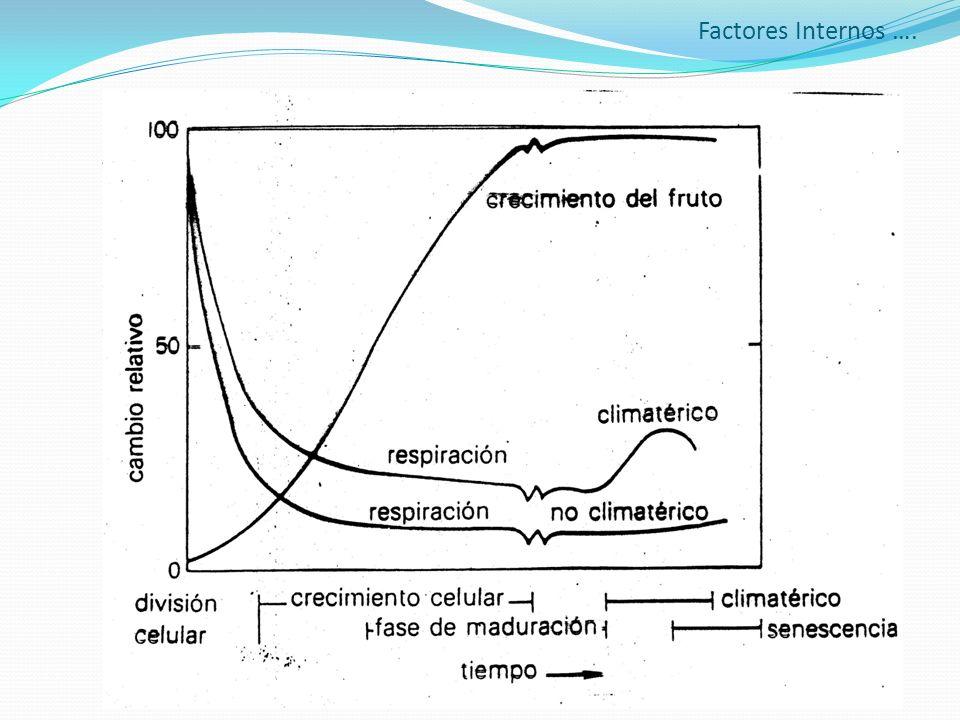 Factores Internos ….