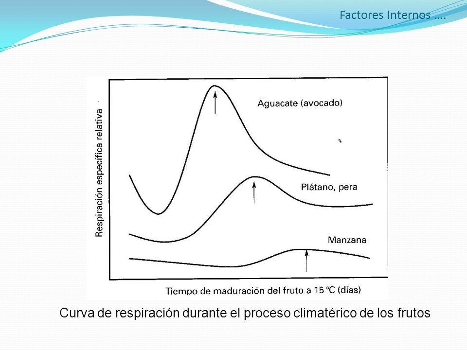 Factores Internos …. Curva de respiración durante el proceso climatérico de los frutos