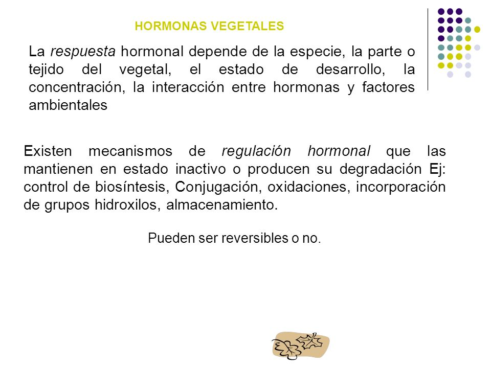 FITOHORMONAS MECANISMO DE ACCION