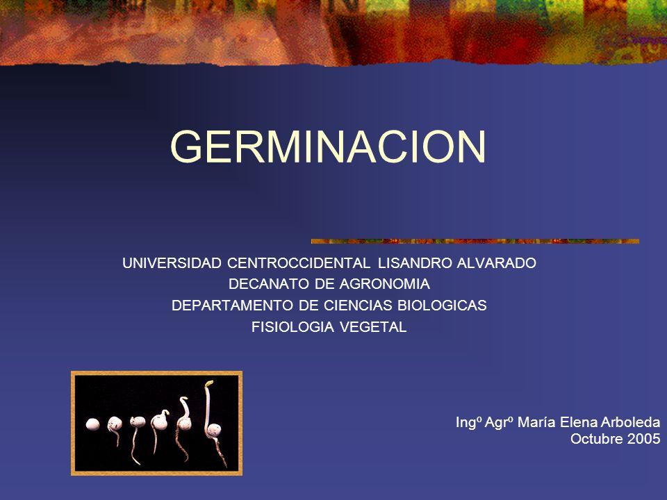GERMINACION UNIVERSIDAD CENTROCCIDENTAL LISANDRO ALVARADO