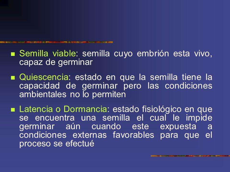 Semilla viable: semilla cuyo embrión esta vivo, capaz de germinar