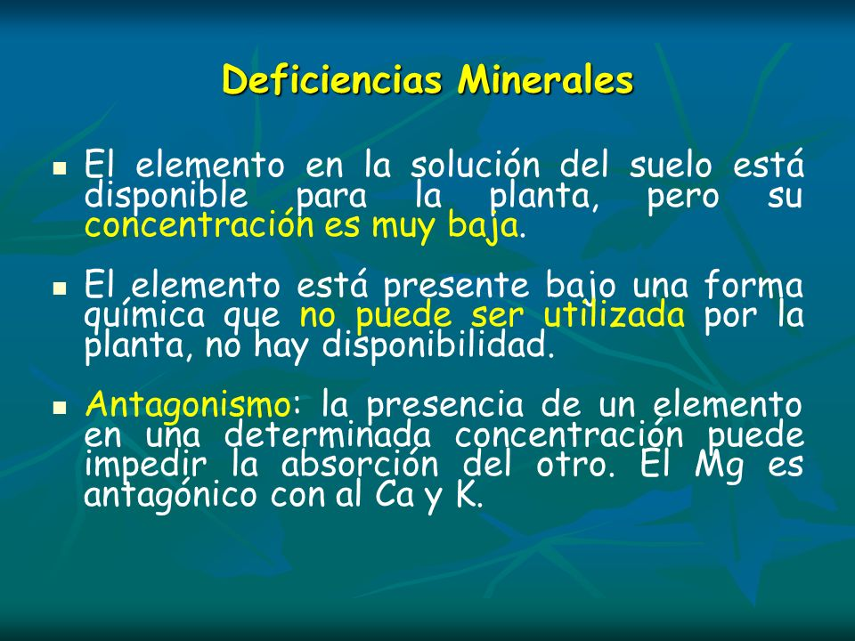 Deficiencias Minerales