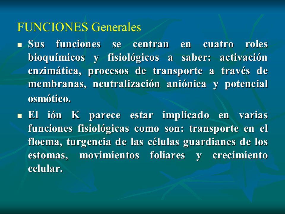FUNCIONES Generales