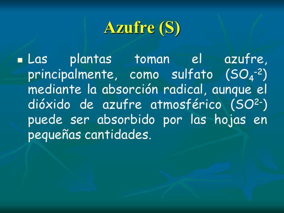 Azufre (S)