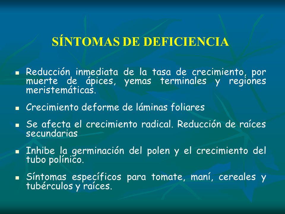SÍNTOMAS DE DEFICIENCIA