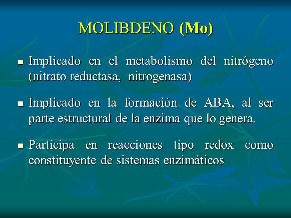 MOLIBDENO (Mo)Implicado en el metabolismo del nitrógeno (nitrato reductasa, nitrogenasa)