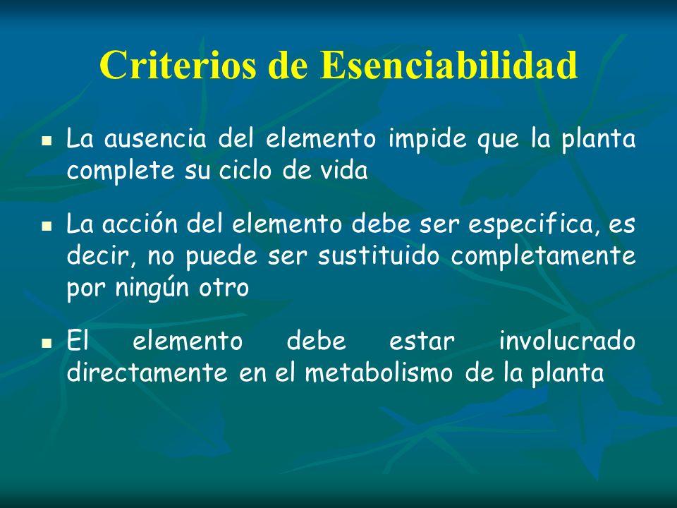 Criterios de Esenciabilidad