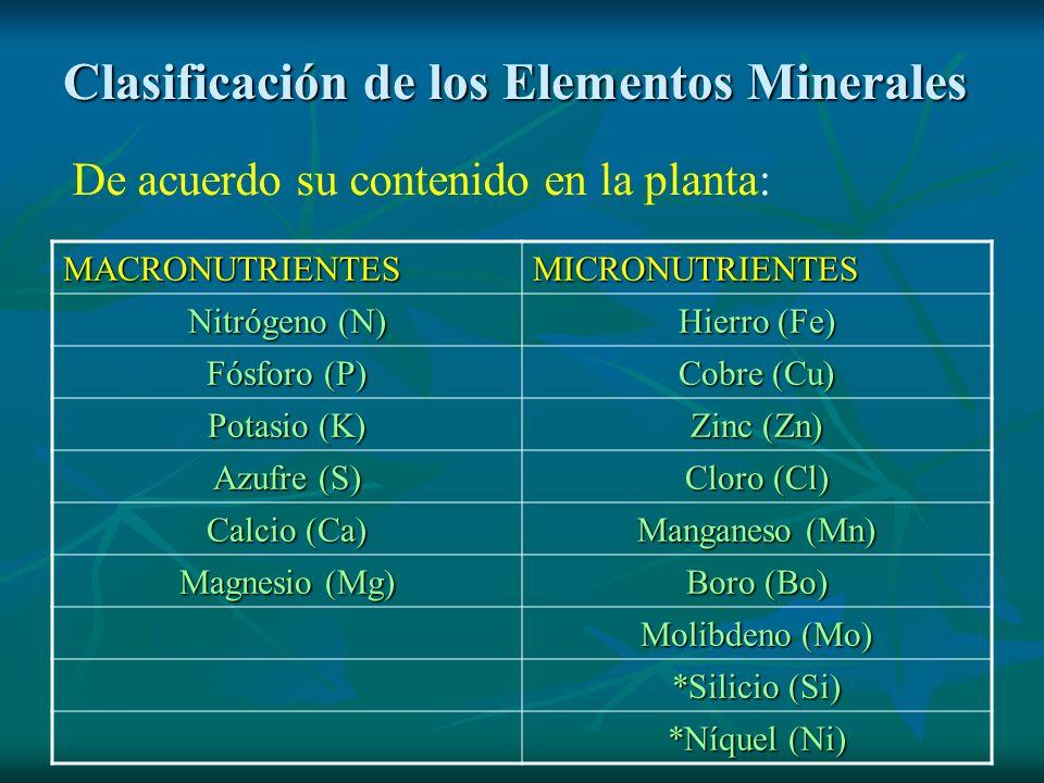 Clasificación de los Elementos Minerales