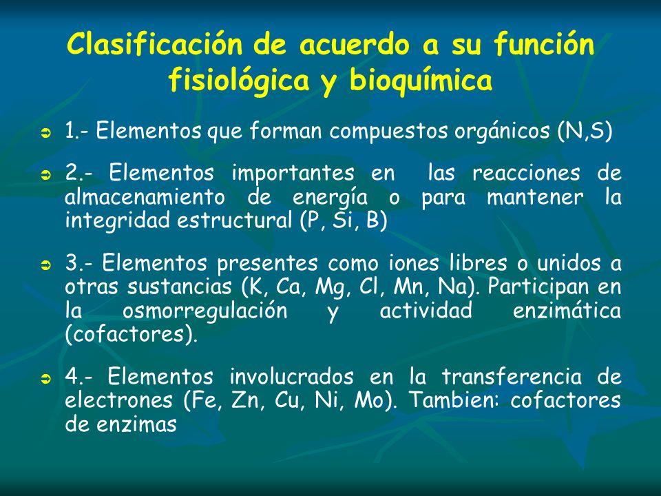 Clasificación de acuerdo a su función fisiológica y bioquímica